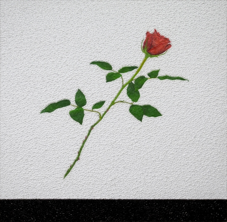 00102 The Rose Theory; Problems around Rose