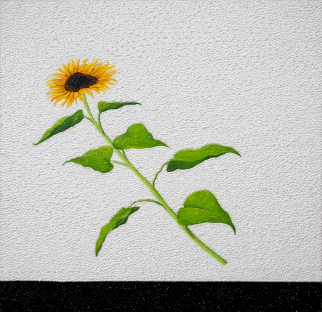 00103 The Sunflower Theory; Problems around a Sunflower